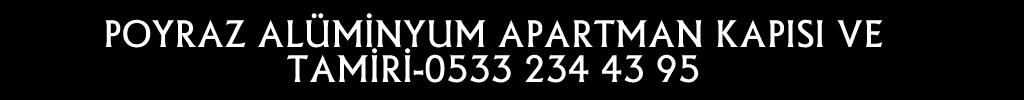 etlik-aluminyum-apartman-kapisi-